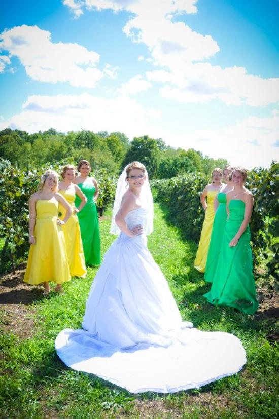 bride-in-vineyard