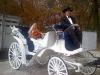 princess-wedding